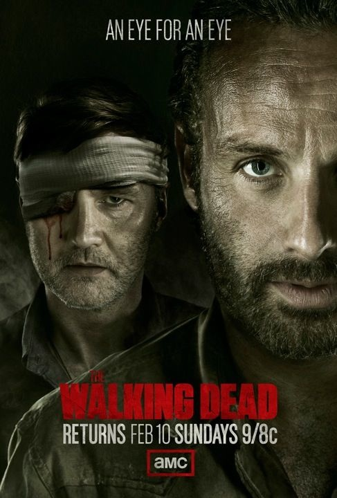 Poster - The Walking Dead - S3.5